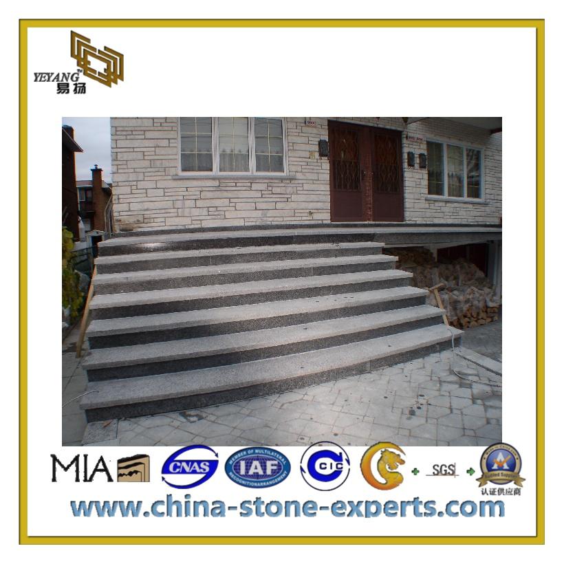 Grey Outdoor Stone Step Anti Slip Riser Granite Stairs (YQC S1010)