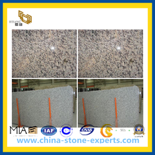 Tiger Skin White Slab for Countertop (YQZ-GS)